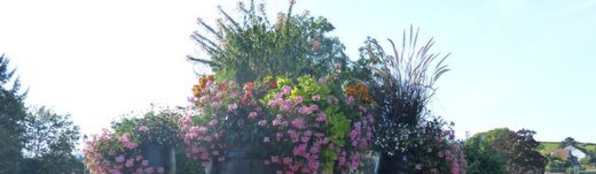 Soirée Fleurissement